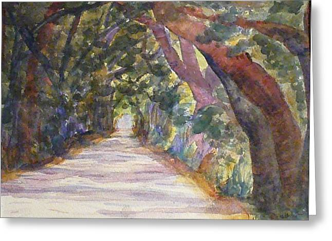 Coffin Point Road Greeting Card by Stella Schaefer
