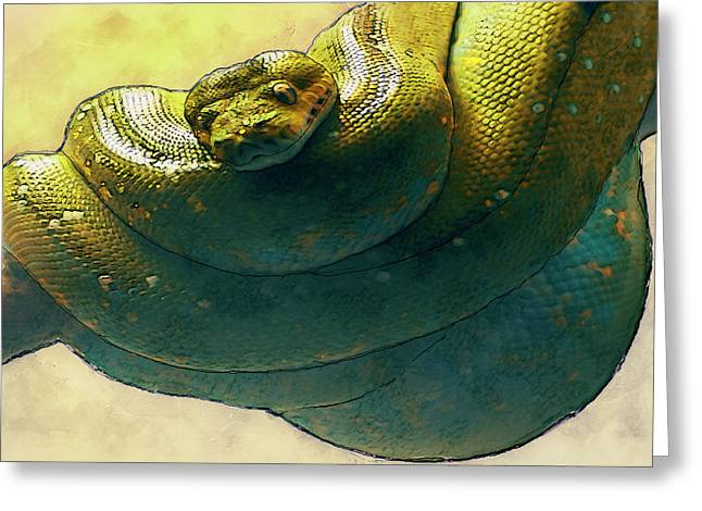 Coiled Greeting Card by Jack Zulli
