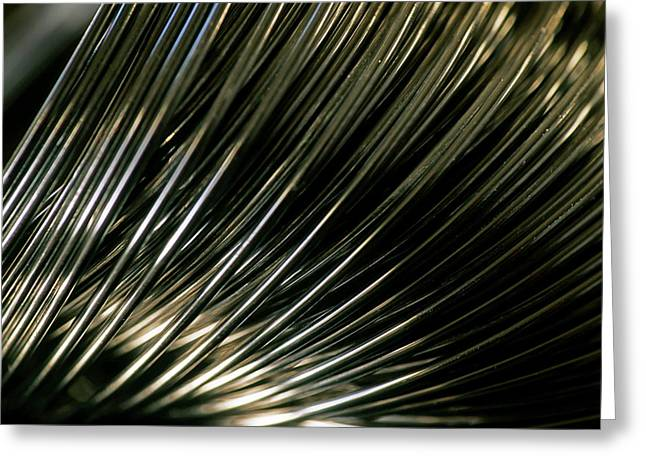 Coil Spring Greeting Cards - Coiled metal spring Greeting Card by Sami Sarkis