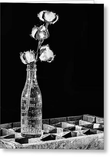 Coke And Cotton Still Life Black And White Greeting Card