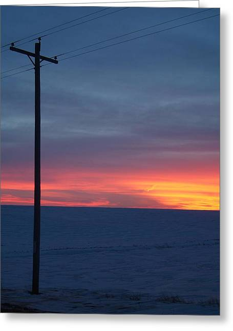 Cold.. Greeting Card by Al  Swasey