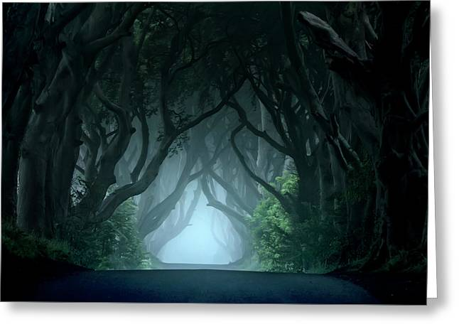 Cold And Blue Morning At Dark Hedges Greeting Card by Jaroslaw Blaminsky