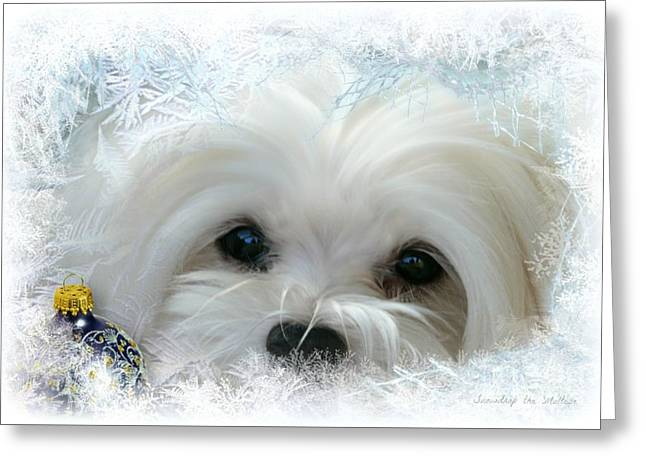Cold As Ice Greeting Card