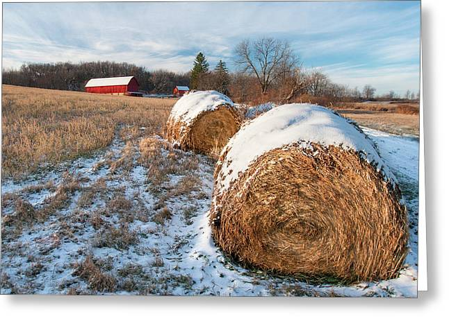 Cold Bales Greeting Card
