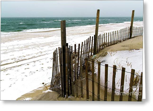 Cold Beach Haven Morning Greeting Card by John Rizzuto