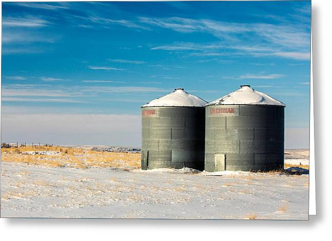 Cold Bins Greeting Card by Todd Klassy
