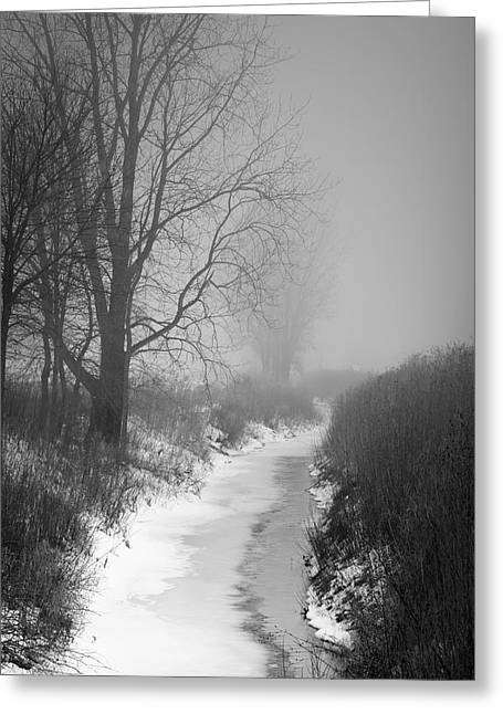 Cold Fog Greeting Card by Cathy  Beharriell