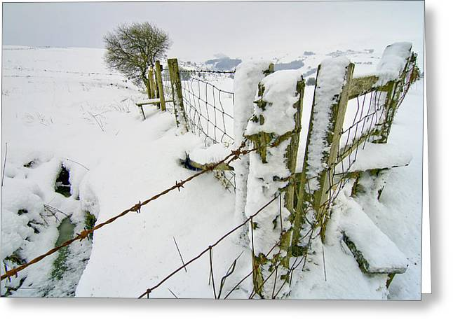 Cold Landscape Greeting Card by Richard Outram