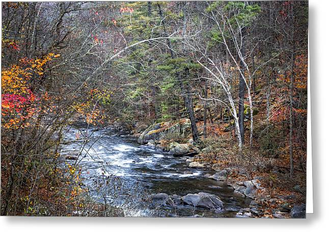 Cold Mountain Stream Greeting Card by Debra and Dave Vanderlaan