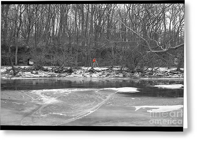 Surveying Greeting Cards - Cold Patuxent Greeting Card by Jefferson Hobbs