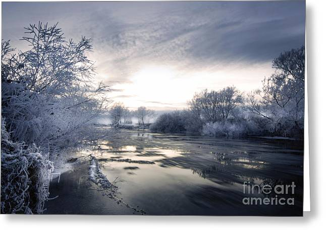 Cold River Flow Greeting Card by Angel  Tarantella