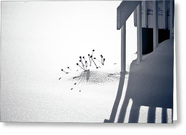 Cold Shadows Greeting Card by Maggie Terlecki