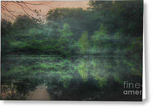 Cold Spring Lake Greeting Card by Larry McMahon
