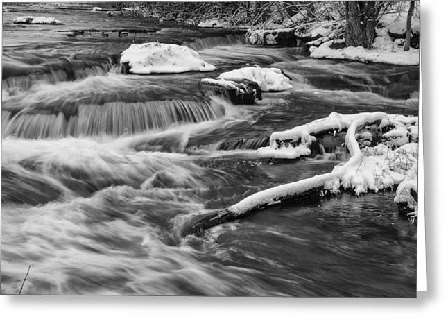 Cold Waters Greeting Card by Jeff Klingler