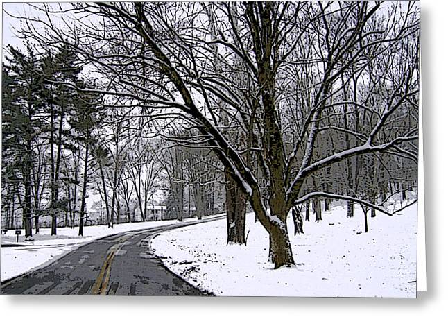 Cold Winter Day Greeting Card by Skyler Tipton