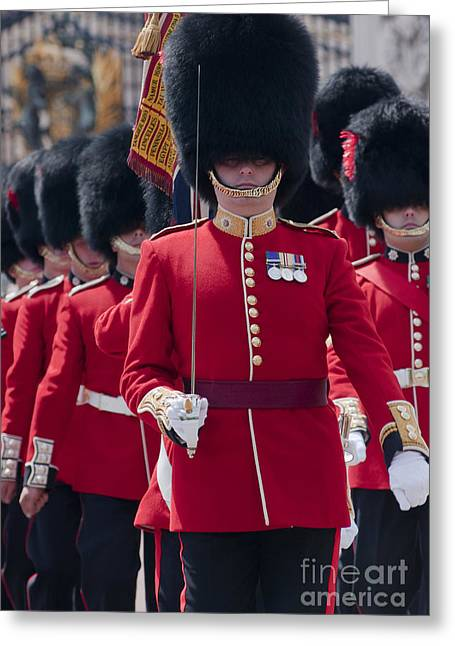 Coldstream Guards Greeting Card by Andrew  Michael
