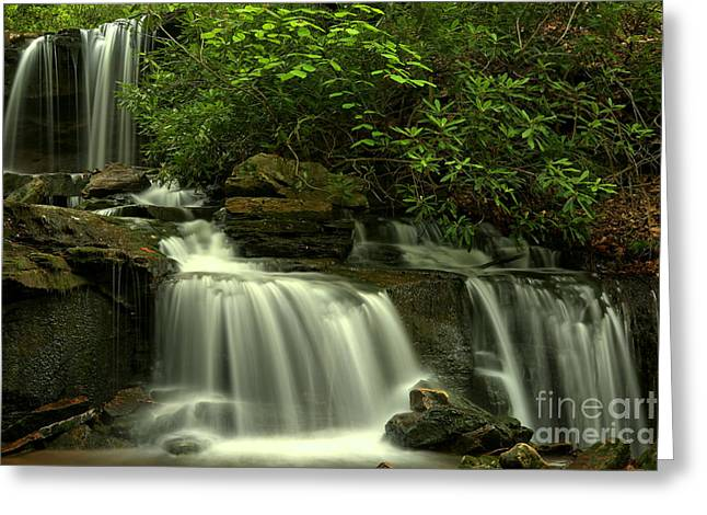 Cole Run Cascades Greeting Card