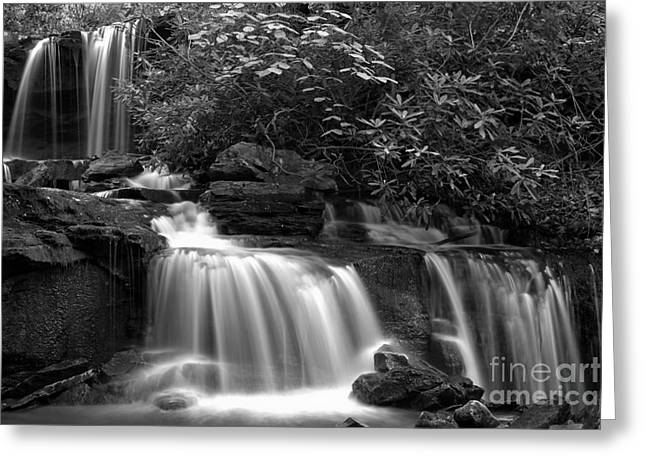 Cole Run Cascades Black And White Greeting Card
