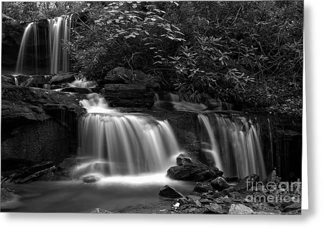 Cole Run Falls Black And White Greeting Card