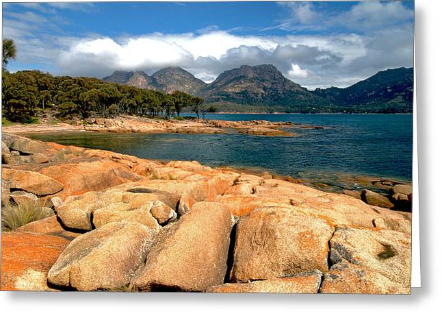 Coles Bay Greeting Card by Vern Minard