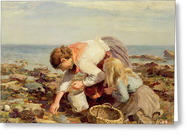 Collecting Shells  Greeting Card by William Marshall Brown