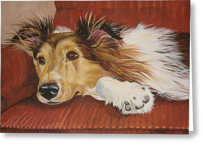 Collie On A Couch Greeting Card by Laura Bolle
