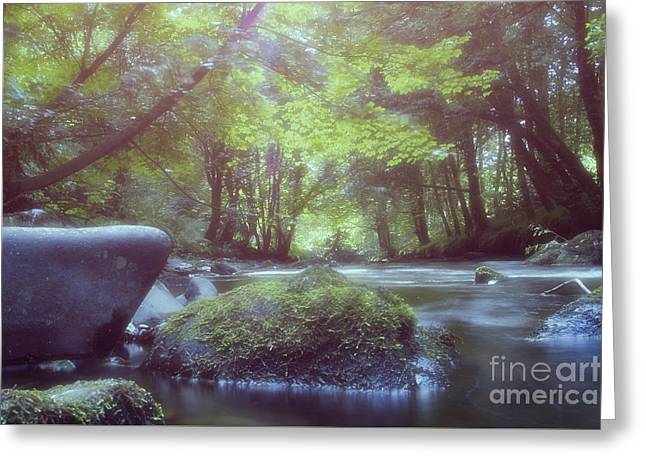 Colligan River Dream 2 Greeting Card