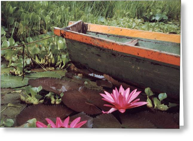 Colombian Boat And Flowers Greeting Card by Lawrence Costales