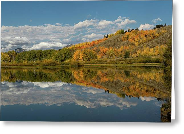Color At Oxbow Bend Greeting Card