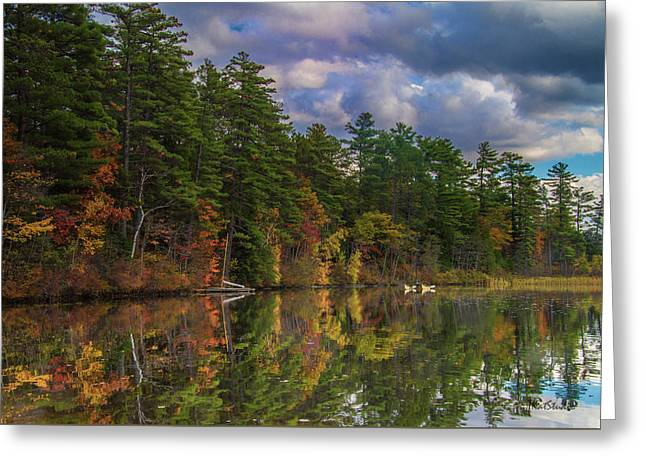Color At Songo Pond Greeting Card