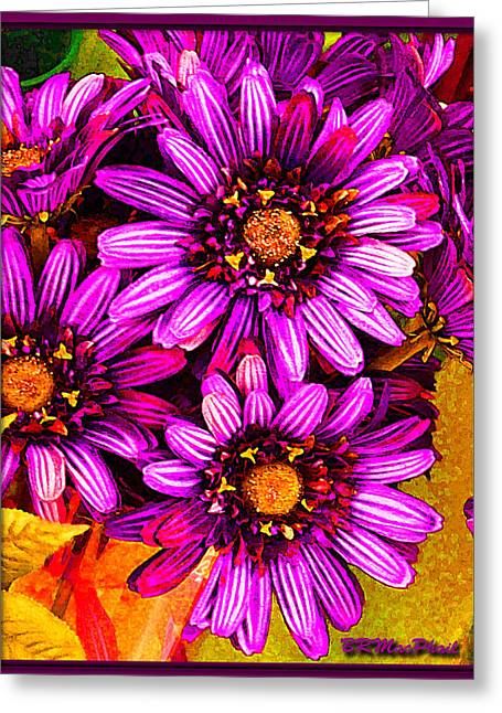 Color Bright Greeting Card