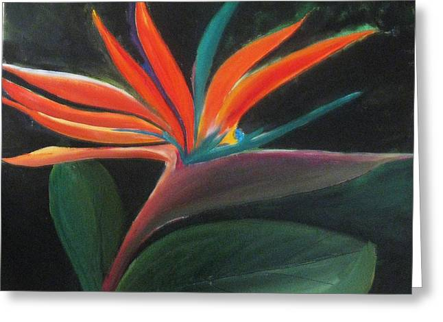 Greeting Card featuring the painting Color Burst by Trilby Cole