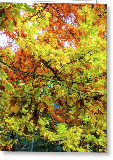 Color Change Of Autumn Leave 1 Greeting Card by Lanjee Chee