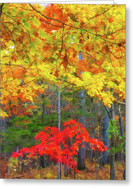 Color Change Of Autumn Leave 2 Greeting Card by Lanjee Chee