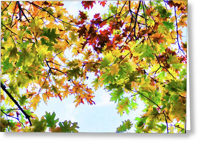 Color Change Of Autumn Leave 3 Greeting Card by Lanjee Chee