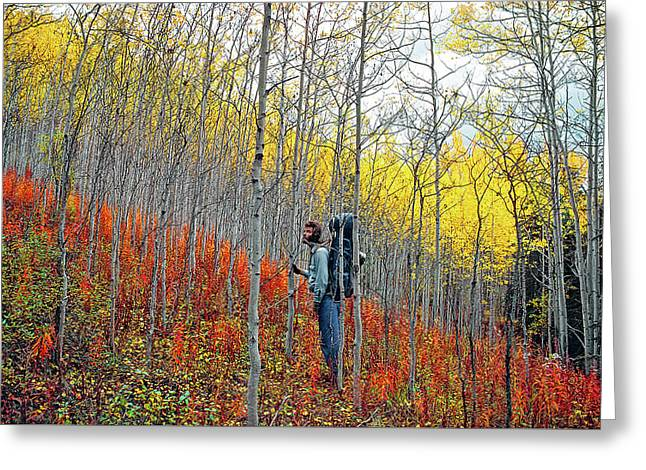Color Fall Greeting Card