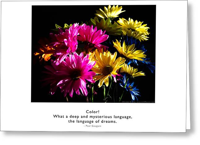 Greeting Card featuring the photograph Color Language Of Dreams by Kristen Fox