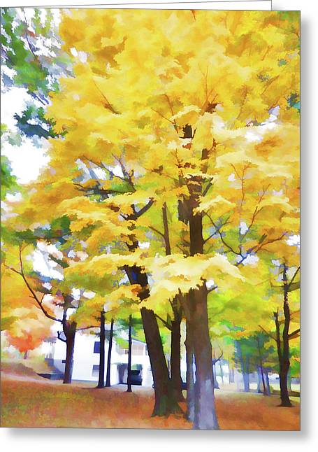 Color Nature  Greeting Card by Lanjee Chee