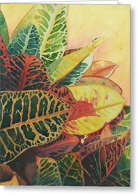Color Of Crotons Greeting Card by Judy Mercer