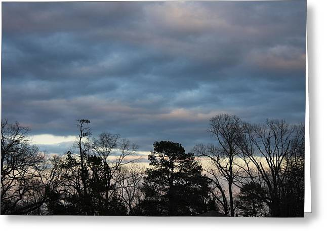 Color Of The Sky Greeting Card by Lee Anderson