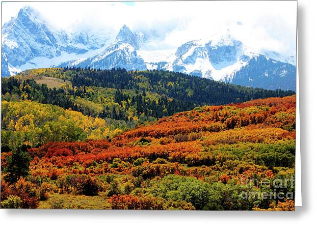 Colorado Autumn 2016 San Juan Mountains  Greeting Card