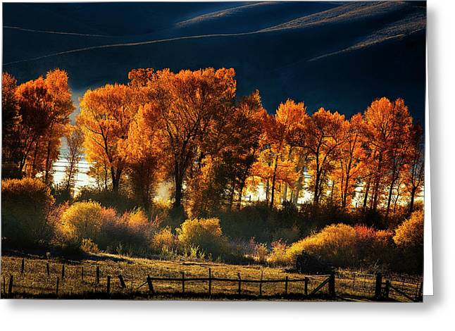 Greeting Card featuring the photograph Colorado Autumn Morning by Andrew Soundarajan