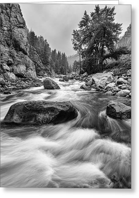 Colorado Black And White Canyon Portrait Greeting Card by James BO  Insogna
