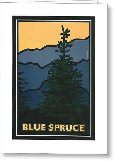 Colorado Blue Spruce Greeting Card