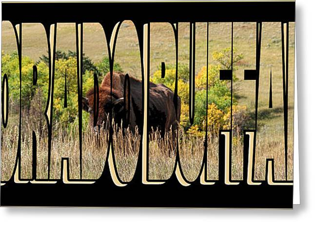Colorado Buffaloes Name  9236 Greeting Card by Jack Schultz