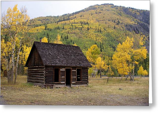 Marty Koch Greeting Cards - Colorado Cabin Greeting Card by Marty Koch