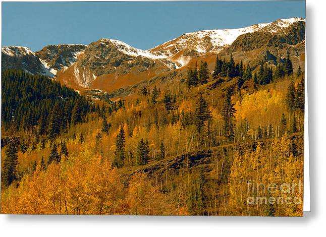 Colorado Greeting Card by David Lee Thompson