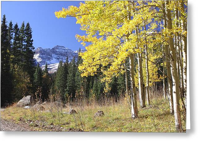 Colorado Dreamin' Greeting Card by Eric Glaser