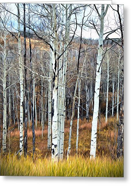 Greeting Card featuring the photograph Colorado Fall Aspen by James Steele