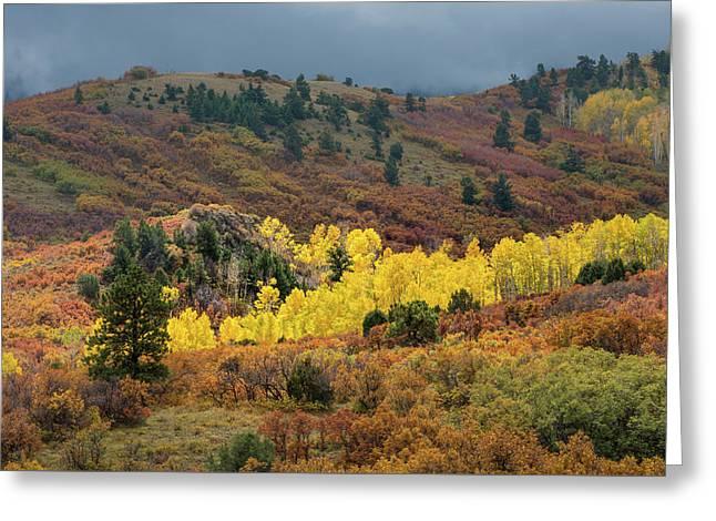 Colorado September Greeting Card by Joseph Smith